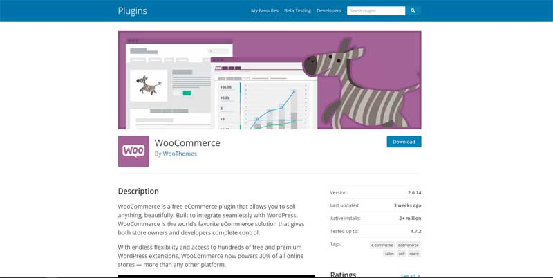 WordPress WooCommerce eCommerce website