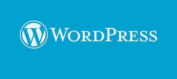 Website Design WordPress Development